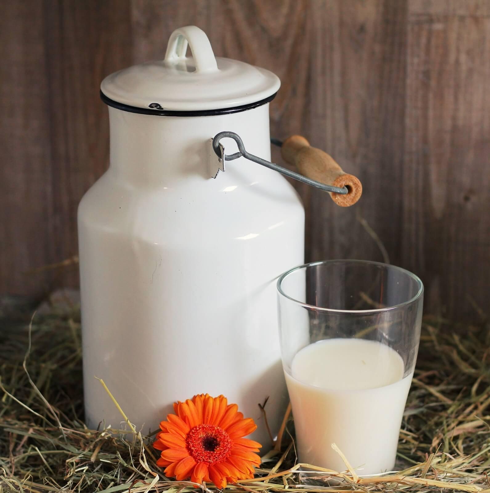 calcium-in-milk-abloomnova.net_-1591x1600 The truth about calcium in milk