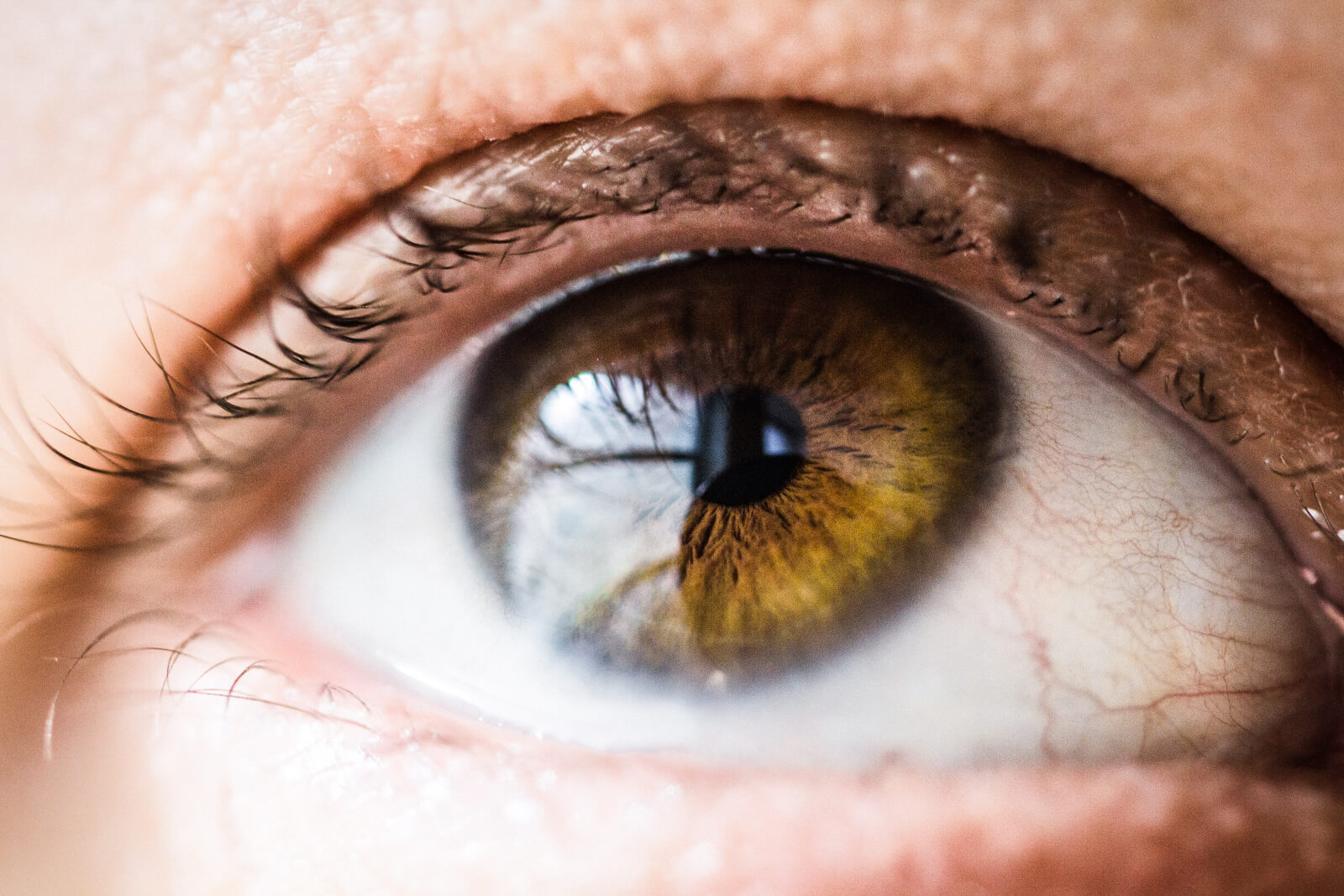 sensitive-eyes-makeup-remover-abloomnover.net_-1600x1067 Shopping for a sensitive eyes makeup remover?