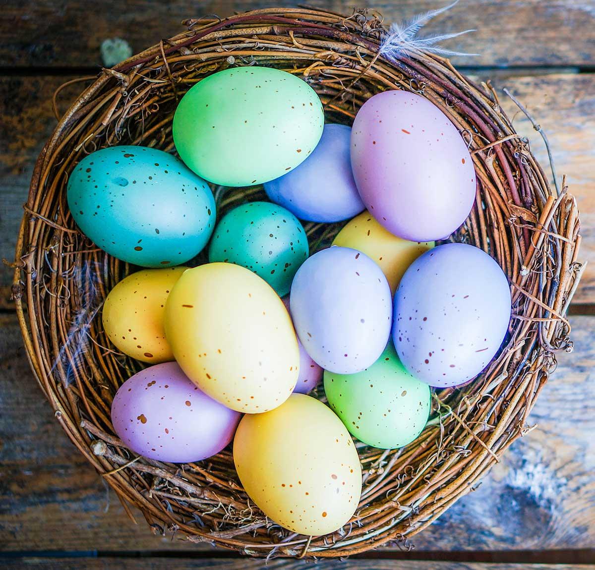 eastBig Easter Egg Hunt